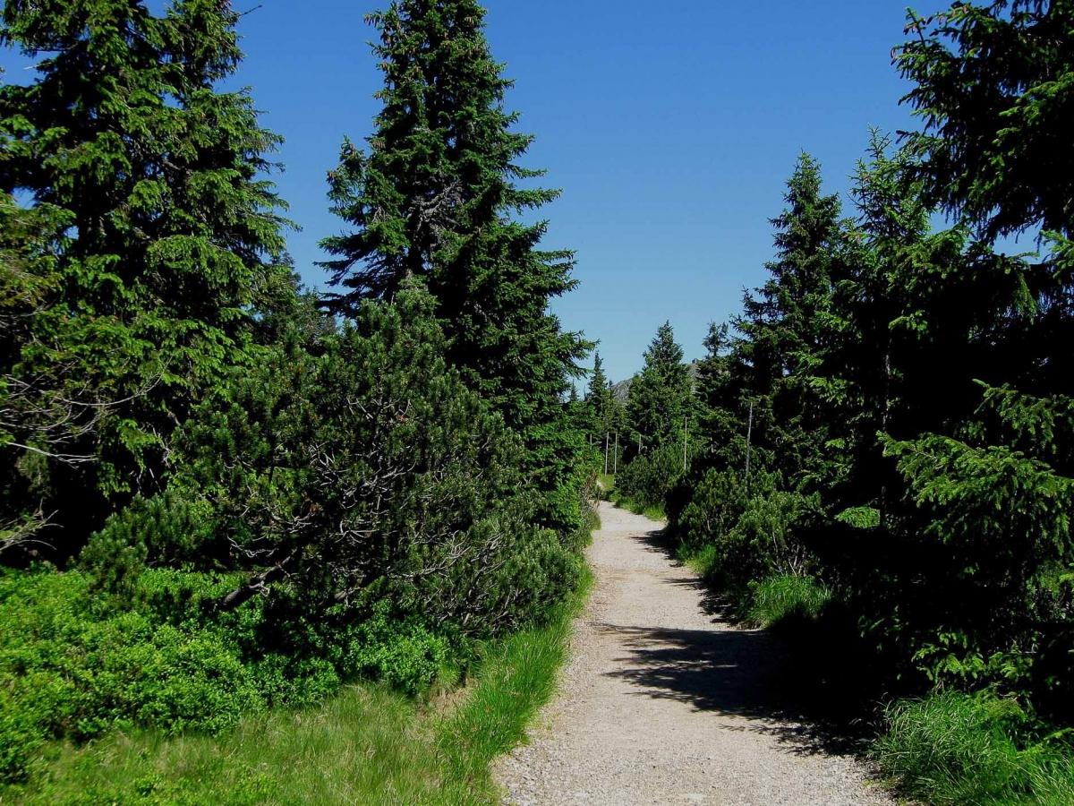 Fotoreise Riesengebirge - Tschechische Republik